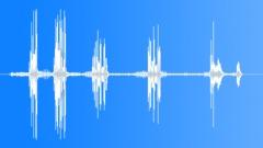 AfricanHillBabbl15153 - sound effect