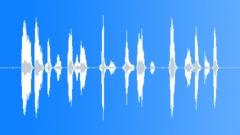 AfricanGreyParro17035 - sound effect