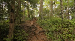 Mountain trail 1, dolly push in Stock Footage