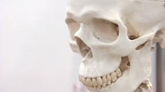 White skull Stock Footage