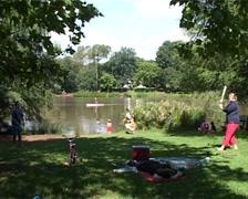 Emmarentia Park Dam Picnic and Cricket, GFSD Stock Footage