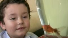 Little boy likes fish1 Stock Footage