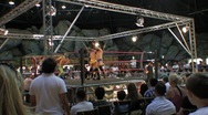 Pro wrestling match - Audience POV point of view HD Stock Footage