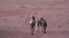 Man riding a camel, walks with four camels in desert Stock Footage
