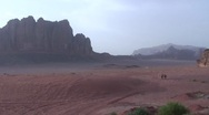 Stock Video Footage of desert long shot of three camels walking