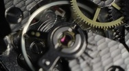 Macro Watch III Stock Footage