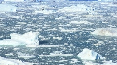 Ice Floes with Icebergs Stock Footage