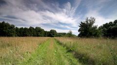 rural landscape. - stock footage