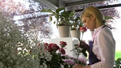 Girl at work as florist in flowers shop and smelling red roses - stock footage