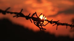 Barbed wire sunset Stock Footage