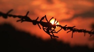 Stock Video Footage of Barbed wire sunset