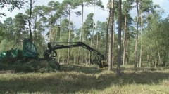 H708009 timberjack harvester  forestry 01 Stock Footage