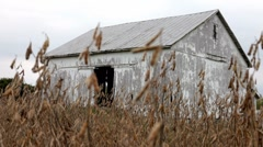 Stock Video Footage of Old Barn in nature dolly shot