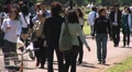 People enjoying a sunny day at the Yoyogi Park, Tokyo, Japan.  Footage