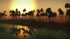 (1273B) Egyptian sahara desert sand dunes palms oasis sunset 2/2 Edit Series - stock footage