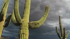 Arizona Desert Stormy Skies Stock Footage