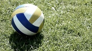 Ball on grass Stock Footage