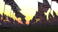 Flags sunset Stock Footage