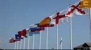 International flags Stock Footage
