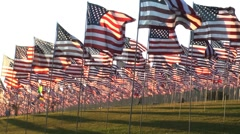 flags in wind couple - stock footage