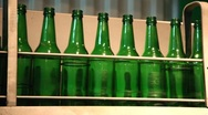 Green bottles in a line Stock Footage