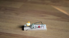 Man Testing A Mouse Trap Stock Footage