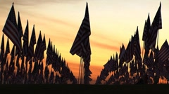 Flags resting sunset Stock Footage