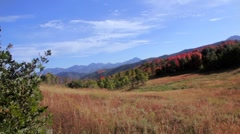 Fall in the mountains dolly shot Stock Footage