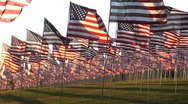 Stock Video Footage of flags in  rows wind