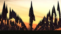 Flags resting sunset2 Stock Footage
