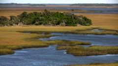 A salt marsh near St. Augustine, Florida. Stock Footage