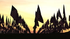 Flags resting sunset3 Stock Footage