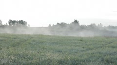 Stock Footage - Myst Mist at sunrise # 5 with morning dew on grass and traffic Stock Footage