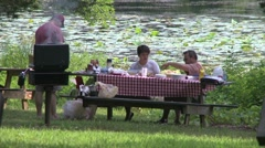 People picnicking at a State Park. (1 of 4) Stock Footage