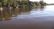 Scenic River 29 Stock Footage