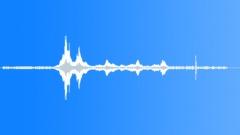 AMUSEMENT PARK, ROLLER COASTER Sound Effect