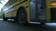 School bus on the road Stock Footage