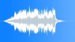 ANIMAL, SEA LION Sound Effect