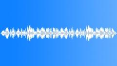 ANIMAL, CHICKEN - sound effect