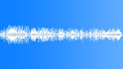 ANIMAL, CHIMPANZEE Sound Effect