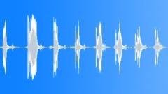 ANIMAL, CHIRP - sound effect
