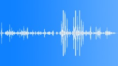 CHIMPANZEE Sound Effect