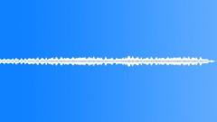 ANIMAL, CRICKETS - sound effect