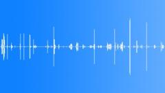 ANIMAL, MONKEY Sound Effect