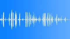 ANIMAL, MONKEY - sound effect