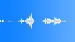 MONKEY, SPIDER - sound effect