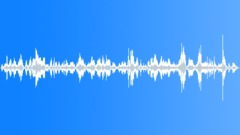 PIG - sound effect