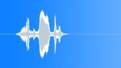 ANIMAL, SEAL - sound effect