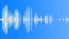 ANIMAL, SEALS - sound effect