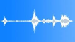 ANIMAL, WALRUS - sound effect